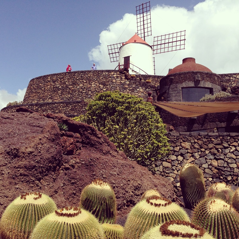 Jardin-de-cactus-manrique-photo-credit-by-TheLostAvocado cosa vedere a lanzarote