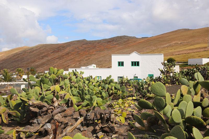 Lanzarote-@-Thelostavocado.com