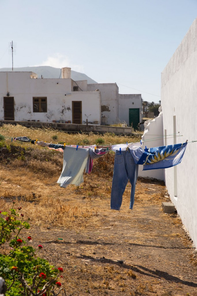 Lazarote-@-Thelostavocado.com