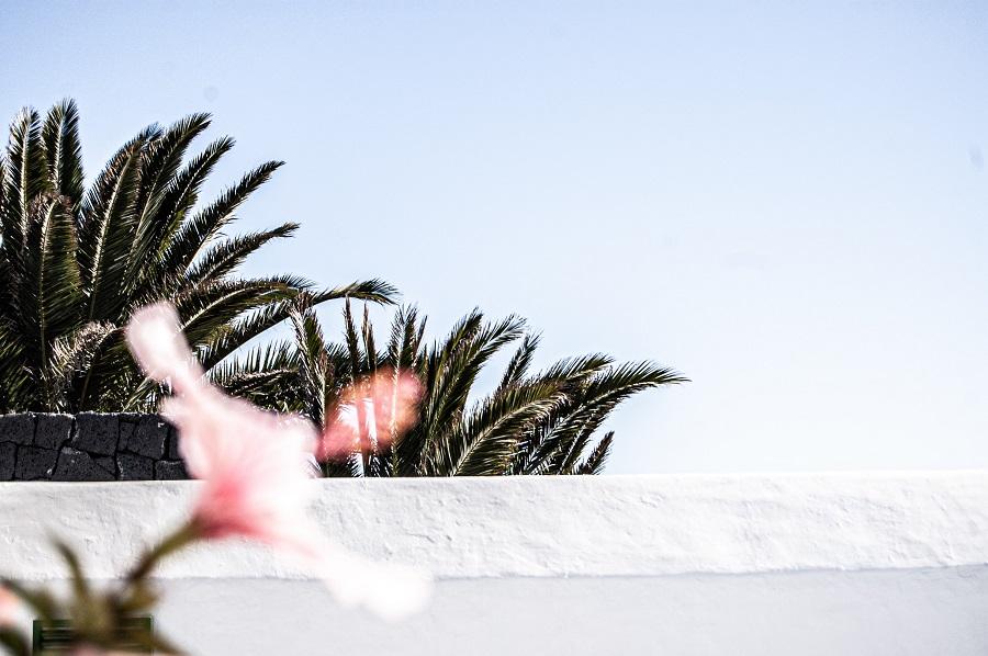 Casa di Deiter Noss a Lanzarote