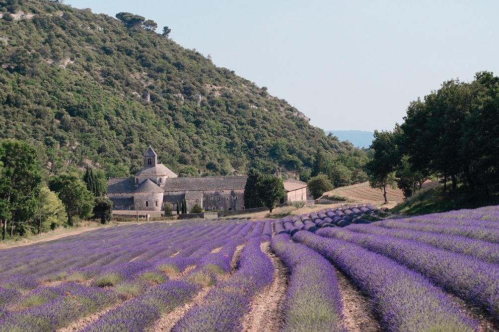 dove andare in estate in vacanza provenza