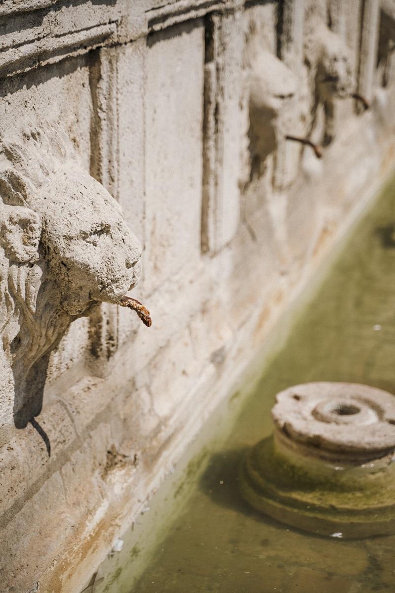 Foto di Assisi, guida cosa visitare in Umbria - Thelostavocado (8)